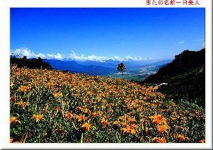 台湾、台湾人が大好き! 台湾良いですね、毎年寒い時期には、三峡の家へ行って居ます。友人も多くなり、楽しいですね。 また、夏の