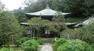 株・夢 & 日常会話、いろいろ 瑞泉寺です ケータイで撮った画像です