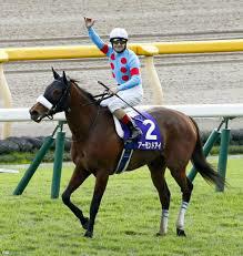 4587 - ペプチドリーム(株) さて、明日の戦略を練るか  常に勝ち続ける 勝ち馬予想