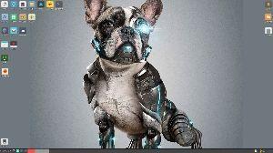 動画コーナー・FLVアップに挑戦。 bionicpup64 を今度は nvidia ドライバと fcitx で起動させてみました。  n