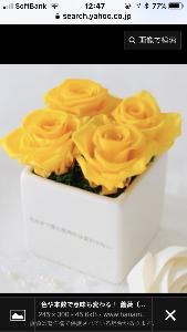 ●君という花● うわっ、9998 いただきました。  で、これが9並びの一つ手前( ̄▽ ̄)ニヤリッ  振り返れば色々