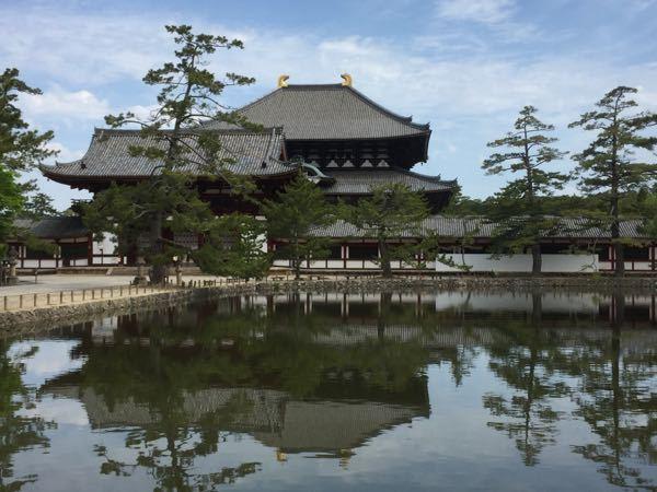 株の大勝会(会員制) いいねー^_^ よく晴れた空、緑の木々、、 私は最近、奈良公園ばっかだよ(^_^;) のんびりとバス