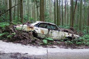 最高の生き方 >あの事件は熊取町でしたね はい、そうですが、当方からは決して近くでは有りません。 近くに捨てると直