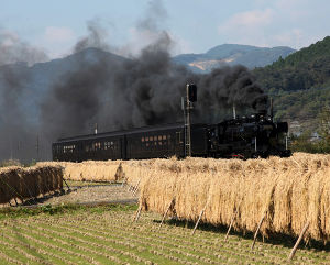 夢の平行線 竿駆(さおがけ)  撮影2014年10月18日 渡~西人吉間 稲の天日干しを「はざかけ」といいますが