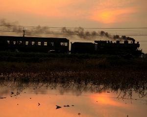 夢の平行線 蓮暮(れんぼ) 撮影2011年11月27日 小川~松橋間 SL人吉の鹿児島本線で撮影した写真です。こ