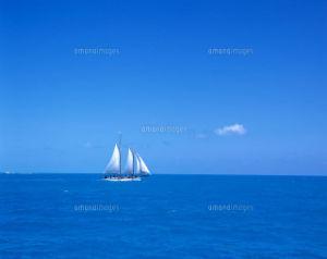 もっと自由に恋したい。(独り言専用トピ) 青い爽やかな空と海 l