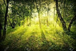 もっと自由に恋したい。(独り言専用トピ) 爽やかな夏の終わり