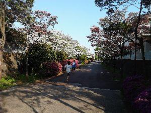 いつか金沢に住みたい 写真はこちらです。