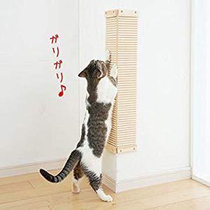 FX 猫板  猫好き集まれ~(*^^*) こっちの板も何気にコメが進んでる(*´ 艸`) 猫好きな方多いんですね。  にゃんこと言