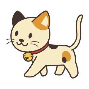 FX 猫板  猫好き集まれ~(*^^*) 九州イイにゃん。 散歩に行きたいにゃん。