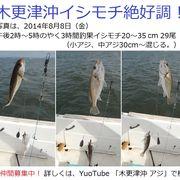 2014 木更津沖のアジの季節がやってきました!  東京・神奈川のみなさん!アクアラインで来てね!