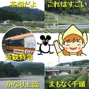 オレの船に乗れよ! 静岡はお茶の産地です。2人を乗せた「元」南海電車は茶畑の広がる中を走って行きます。  アロア:「話に