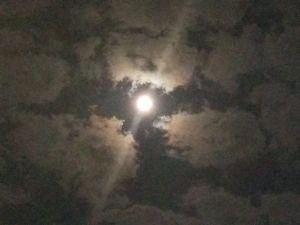 北米から。 おはようございます。昨晩スーパームーンを撮影してみました! が・・・。 雲が多く、ピントも合わないた