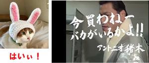 3661 - (株)エムアップ さてと~~来週から★リバリバカーニバル♪ のぅ~はじまり~~~^^ わっしょい!!