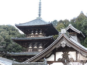 奈良が好きな人の、壁新聞! 写真をアップするのを失敗しましたので上げておきます   当麻寺の西塔です。