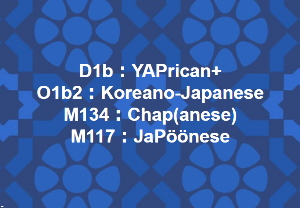 Y-DNAで見る日本人のルーツ 日本の「ハプロ部族」名  ❤ (注)Pööはチベットの意(文語:Bod)  Nは