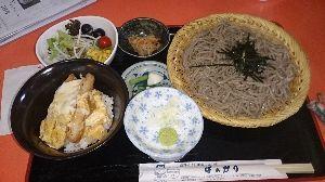 岩手 秋田 青森あたりで、蕎麦打ちやおいしい蕎麦屋さんの話をしませんか? 遠野蕎麦と言うことですが、ラーメンもどんぶりもある食堂です。 汁はまあまあ、蕎麦は水っぽく余り蕎麦の