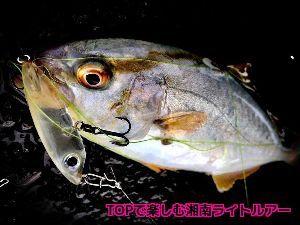 神奈川投げ釣クラブ https://blogs.yahoo.co.jp/sagaminotsurisi2/3580944