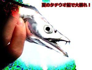 神奈川投げ釣クラブ https://blogs.yahoo.co.jp/sagaminotsurisi2/3578827