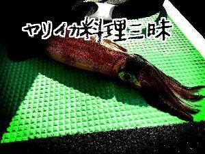 神奈川投げ釣クラブ https://blogs.yahoo.co.jp/sagaminotsurisi2/3596427
