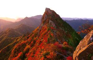おもいで蛍 サラ  南東に  1983m  西日本一  高い、山?  名前  わすれた?  とりあえず  添付、