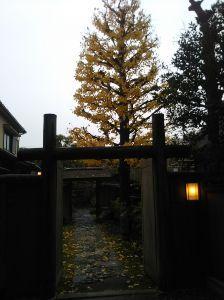 心を空っぽにして おはようさんどすぅ(^^)/ 今朝ブルさんが言ってた谷崎潤一郎の石村亭の扉が開いてて・・・パチリ。。