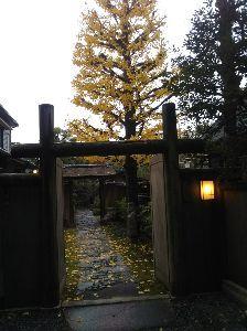 心を空っぽにして へいお昼どした(^◇^)  >石村亭を撮ったのは何時ごろ?  今朝の8時半頃どすぅ~~ 雨模様で曇っ