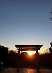 Something in your eyes 元旦の公園に行ってきた。 夕日を見ようと思って。 学生数人のグループがフリスビーで遊んでいた。 高校