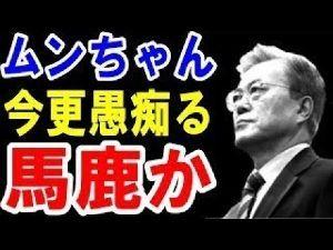 民進党もいらない 朝鮮人は朝鮮人をやめられない 馬鹿は永遠に馬鹿 朝鮮人の馬鹿さは永遠に不滅 笑