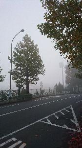 楽しい時間を一緒に過ごしませんか? かなちん、うっちん、まさちん、ちびまるくん、皆さん、お早う御座います、今朝は寒く霧が凄かったです。日