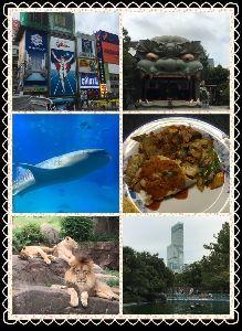 全国の方とお話できれば。。。 そして、2日目(・ω・)ノ  朝一で、パワースポットと呼ばれる 難波八阪神社へGO すご