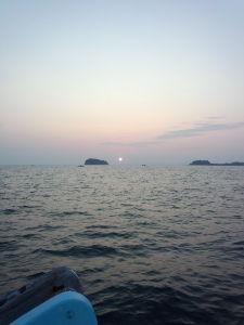 静岡です 愛知で漁師してます 良かったら返事ください