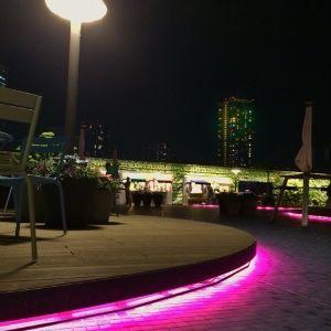 3224 - (株)ヒューマンウェブ 「オイスターバー直営店舗運営・牡蠣の陸上養殖研究...etc」 新材料まとめ とても光の演出が綺麗なので、夜になるとカップルの客もちらほら。