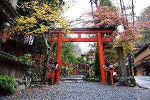 川西市周辺で女友達&彼女になってもいい方いませんか~ 京都市 貴船神社の紅葉です。 早朝にも関わらず人がたくさんいました。