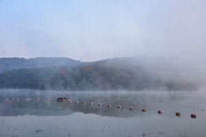 川西市周辺で女友達&彼女になってもいい方いませんか~ 宝塚市 朝もやが立ち込める「川下川ダム湖」です。