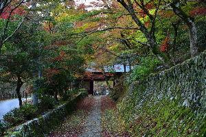 川西市周辺で女友達&彼女になってもいい方いませんか~ 兵庫県丹波市 「石龕寺」紅葉が綺麗でした。