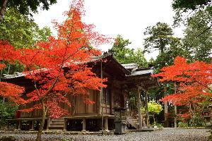 川西市周辺で女友達&彼女になってもいい方いませんか~ 丹波市 「白毫寺」の紅葉です。 このと寺は「枝垂れ藤」で有名ですが、紅葉も綺麗だと聞いたので行って来