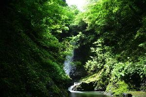 川西市周辺で女友達&彼女になってもいい方いませんか~ 福井県おおい町 「野鹿の滝」です。