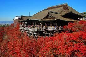 コーヒーとか癒しとか。。♪ ほんとですね。9連休の方なら。。まだまだ笑 地球もいいけど・・・日本もいいね。。🐩🐾°˖✧