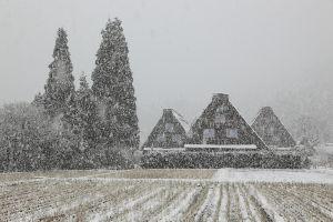 小さな旅って 寒波のせいで 私たちの街の郊外でもひとしきり雪が降りました。 積もるほどではなかったので まだ明日の
