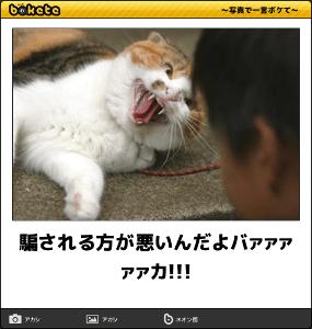 8704 - トレイダーズホールディングス(株) トレイも騙し上げ     70円(笑)