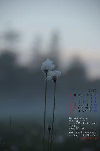 siki観測所 自然の中の数;2.5