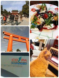 空想ライダーズ・カフェ☆クランク☆ えいちゃんです。 今日はロードバイクの走り初め&プール🏊泳ぎ初めでした。仲間と初詣に平安神宮