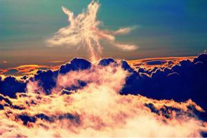 3776 - (株)ブロードバンドタワー 本気のフェニックスはまだ先かな  いつか天高く舞い上がれ 平成最後の、、あっ終っちゃってた  今世紀