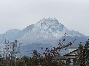 温泉 釣り 旅行 植物 その他 そうです。姫松屋です。 普賢岳です。