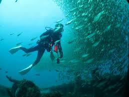 スキューバ めっちゃ魚