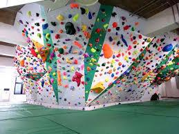7782 - (株)シンシア 【筋肉質と握力】  ここからは筋肉質と握力 ボルダリングの...天井はまだだよ!!