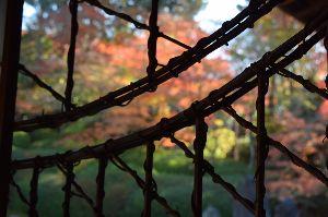 50代友達広場へ来て~~~♪ おはようございます 京都の紅葉の写真です。