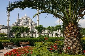 トルコ旅行 はじめまして、 大分前ですがトルコ一週の旅をしてきました。  見どころもいろいろありますね~ 機会が