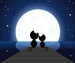 楽しく行こっ♪ 防波堤   ふたりの上に       月明かり  昔々こんなロマンチックな時間を 過ごした事が有りま